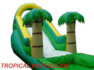 Hawaiian Waterslide Rental